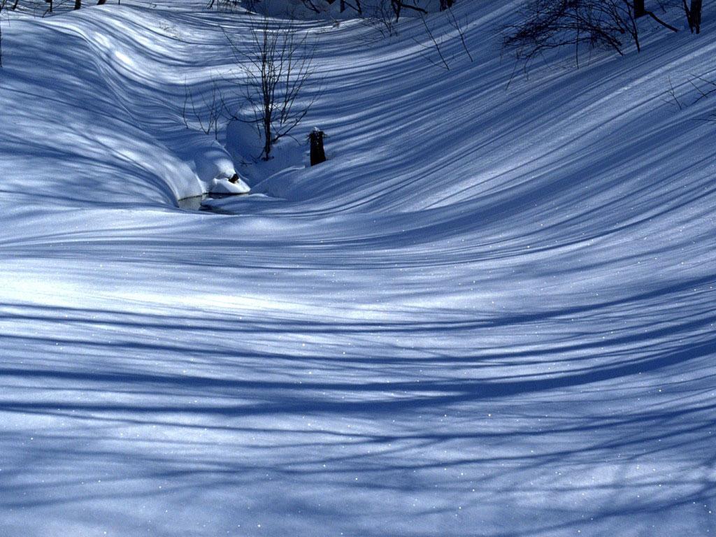 壁纸 冬雪/登录/注册后可查看大图