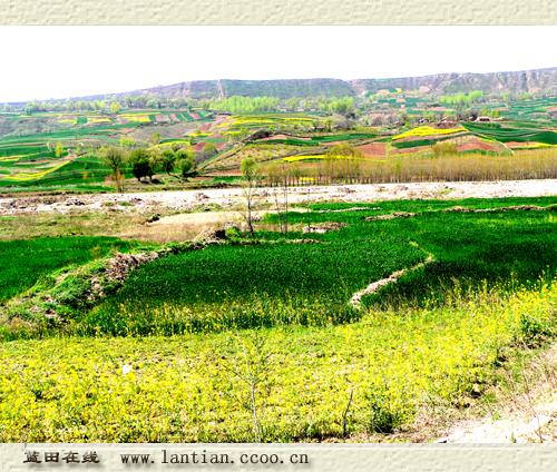 色彩风景图片 家乡