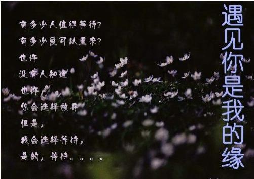 [转] 遇到你是我的缘想念你是我的歌 - 心雨轩 - 心雨轩