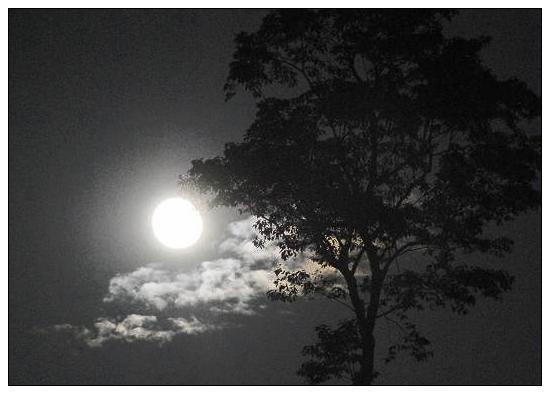 (一)家乡的月亮