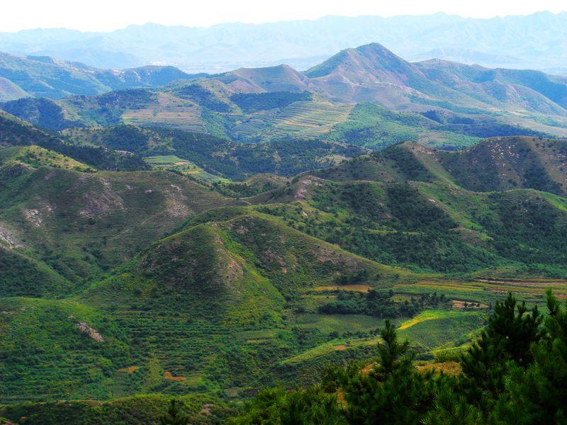 经济作物有棉花.全县有林地面积134亩,森林覆盖率达28.9%.