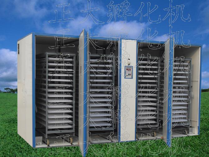 19200枚孵化机-cfa微电脑全自动孵化机
