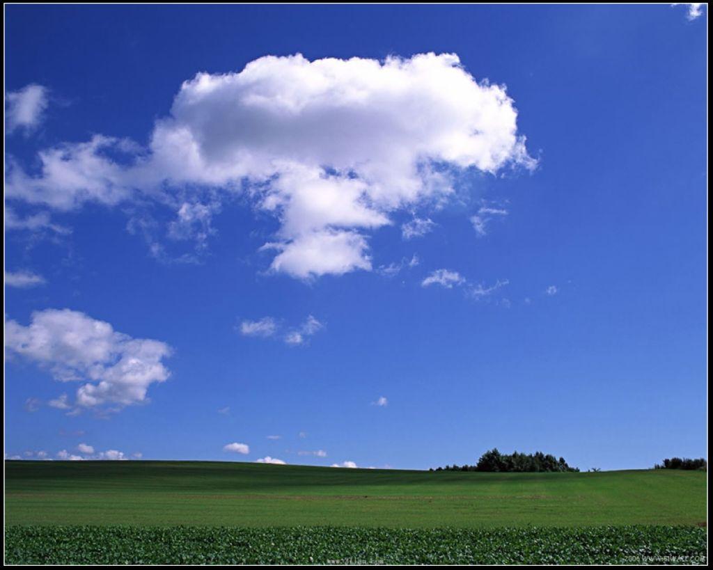 我给补上歌词 因为我们今生有缘,让我有个心愿,等到草原最美的季节,陪你一起看草原 。 1、去看那青青的草,去看那蓝蓝的天,看那白云轻轻的飘,带着我的思念,陪你一起看草原,阳光多灿烂,陪你一起看草原,让爱留心间。 2、去听那悠扬的歌,去看那远飞的燕.,看那慢慢长长的路,能把天涯望穿。