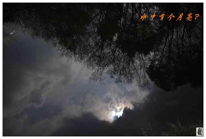 龍泉山風景區采風---風景篇
