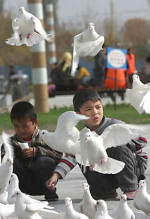 沙雅县中心广场 维吾尔族少年喂