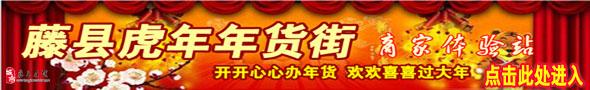2010年藤县在线年货街