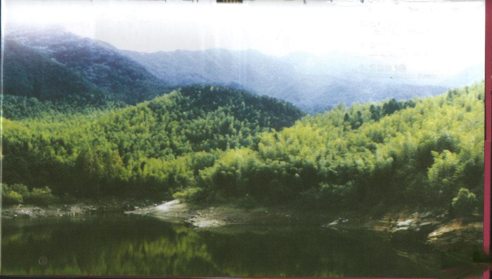 森林公园—黄柏山  黄柏山生态旅游区位于河南省最南端,商城县
