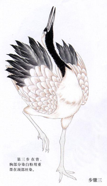 工笔仙鹤的画法 图例 -喀左县七色光美术教室图片
