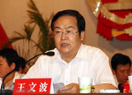 县人大常委会主任王文波作动员讲话