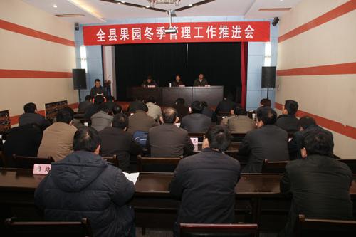 升 左二 介绍果园冬季管理工作情况汇报 -新安县新城实验学校图片