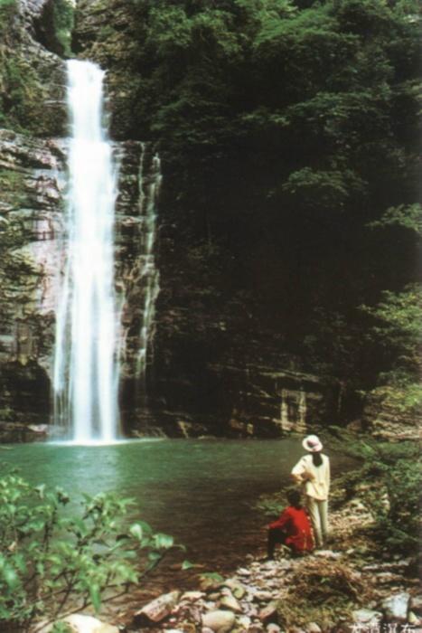 桂平市龙潭国家森林公园旅游合作投资项目,桂平招商,桂平信息网